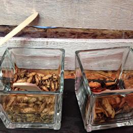 Tržnica Markterei u Beču Vienna Wien pečeni insekti