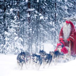 santa-husky-sled-rovaniemi-3
