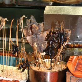 Gastroputopis Kina