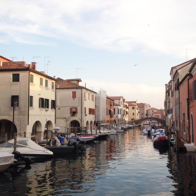 Went to Chioggia and found a little Venice! And theyhellip