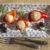 recept za paštetu od divljeg lososa