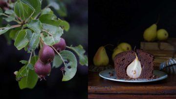 recept za čokoladni kolač s kruškama
