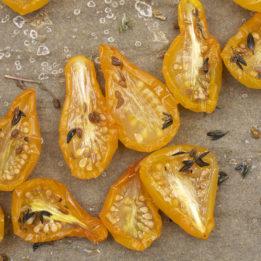 recept španjolski za sušenje rajčice paradajza pomidora