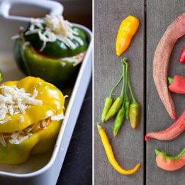 recepti za jela s paprikom