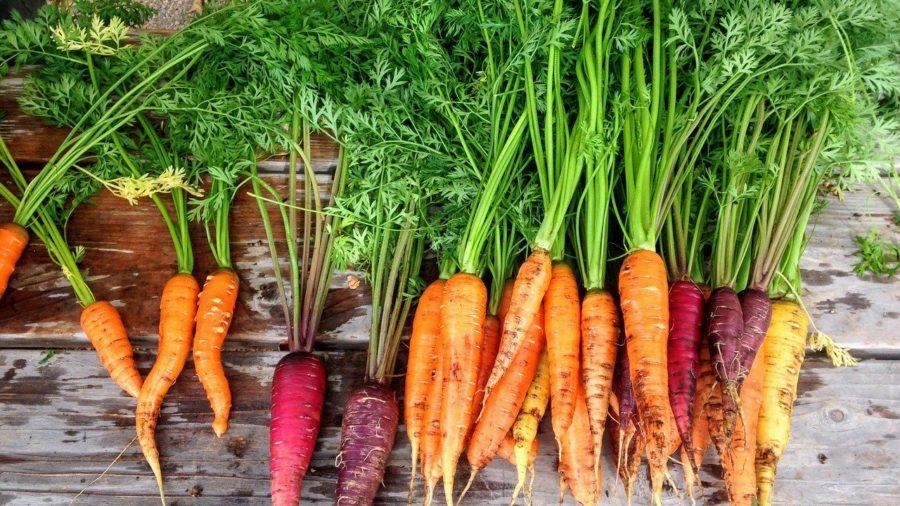 recepti za salate s mrkvom